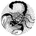 Любовная совместимость и интимные секреты Всех Знаков Зодиака