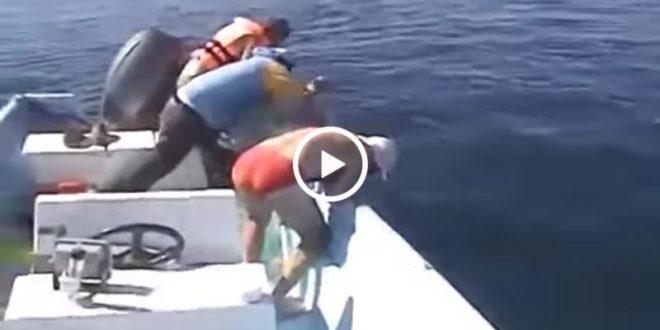 Они спасли умирающего кита. То, что он сделал в ответ, людям не забыть до конца жизни!