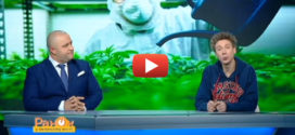 Украинцев вскоре начнут лечить марихуаной