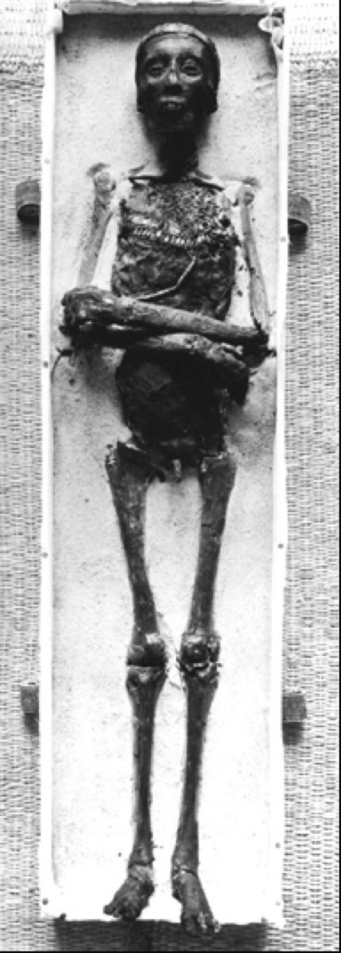 Анализ ДНК почти 100 египетских мумий шокировал учёных всего мира