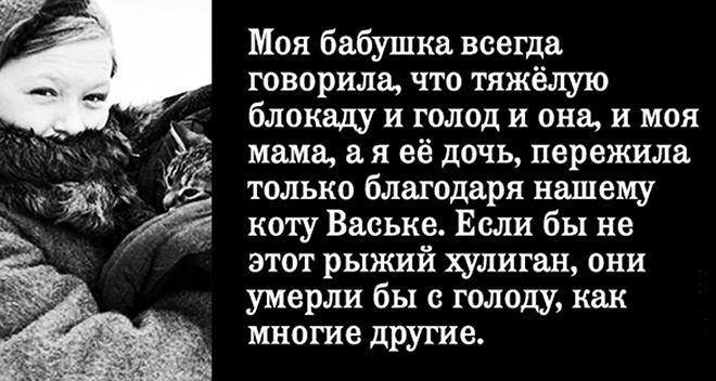 История о Ваське, который спасал всю семью от голода